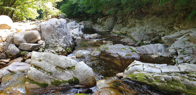 선재길을 걷다 지치면 길을 따라 흐르는 오대천의 맑고 차가운 물에 발을 담그고 잠시 쉬어갈 수 있다.
